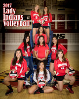 2017 Cobre High Volleyball Team Pictures