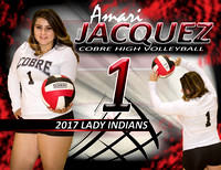2017 Cobre High Volleyball Posters